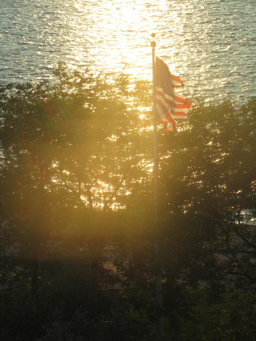 Flag in the Sun